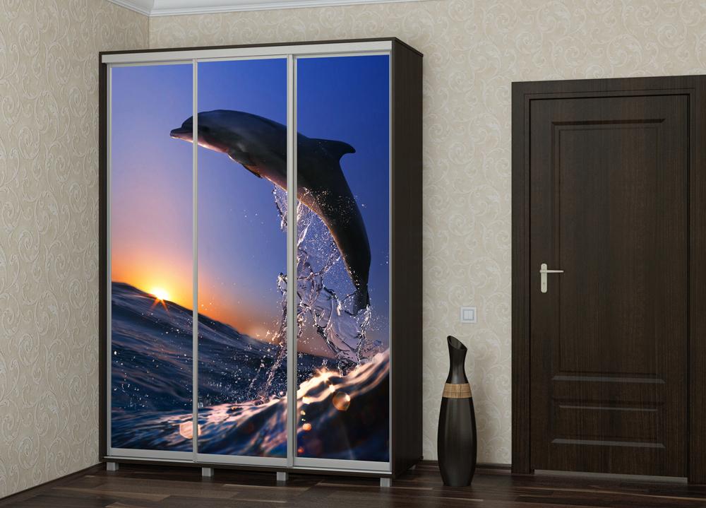Шкаф купе Топ-Лайн 1776 / 450 / 3 секции / фотопечать дельфин