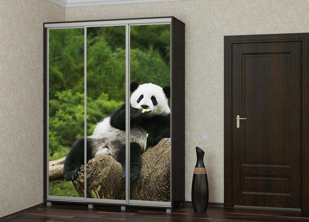 Шкаф купе Топ-Лайн 1776 / 450 / 3 секции / фотопечать панда