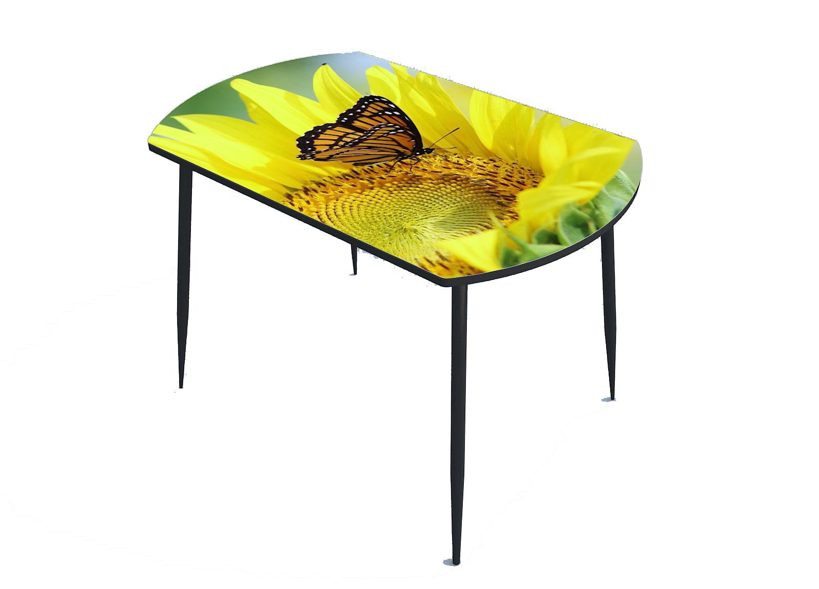 Стол стекло фотопечать Бабочка 053