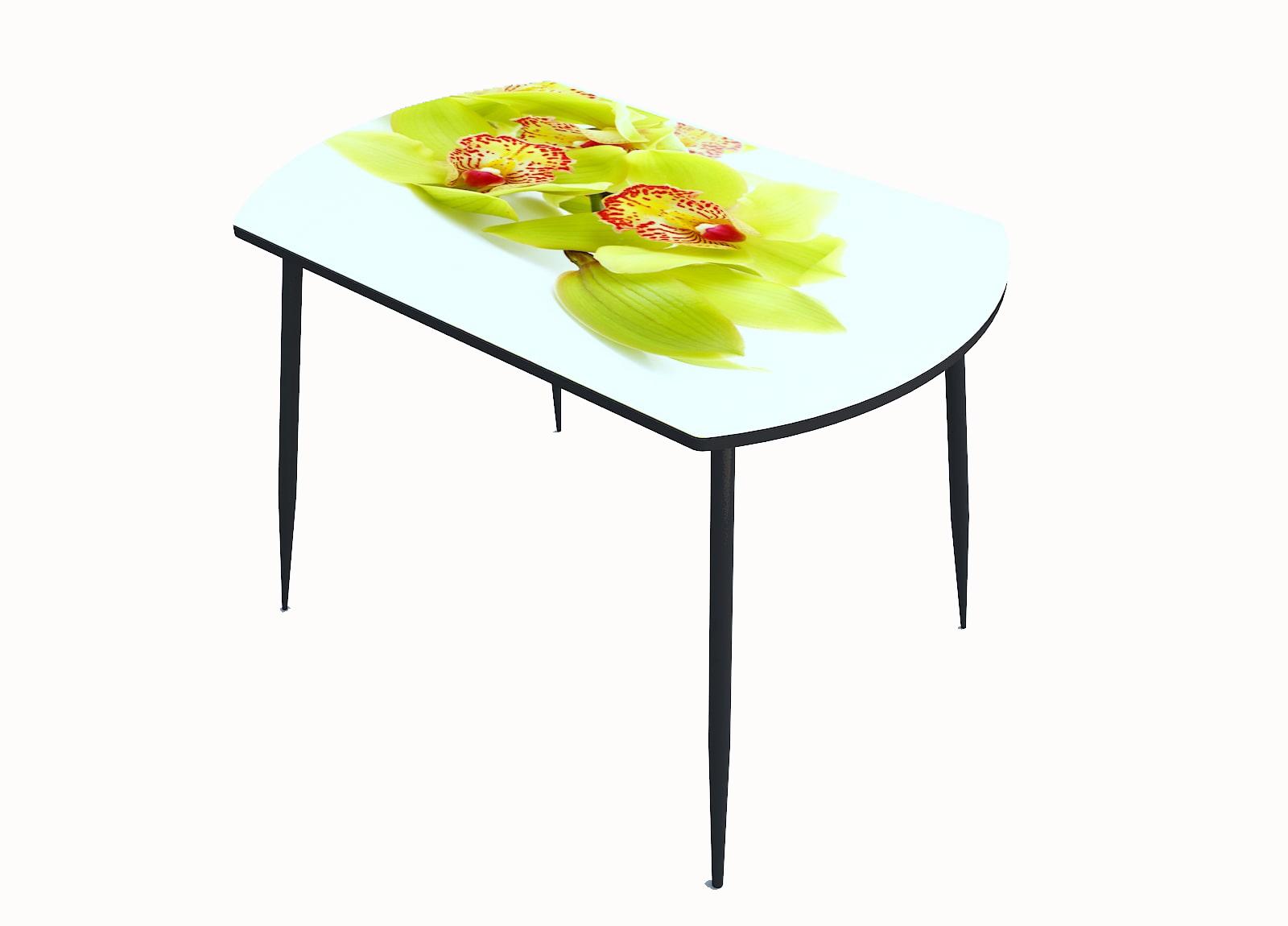 Стол стекло фотопечать Орхидея 055