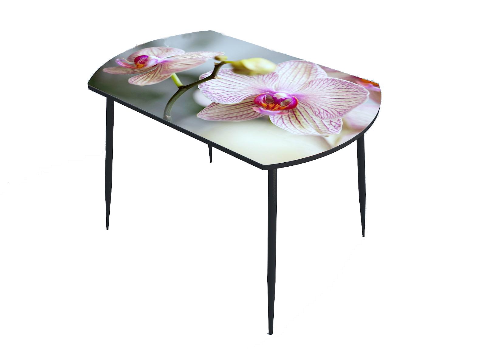 Стол стекло фотопечать Орхидея 059