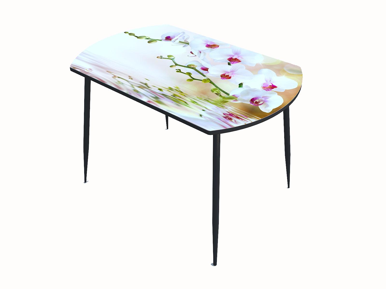 Стол стекло фотопечать Орхидея 061