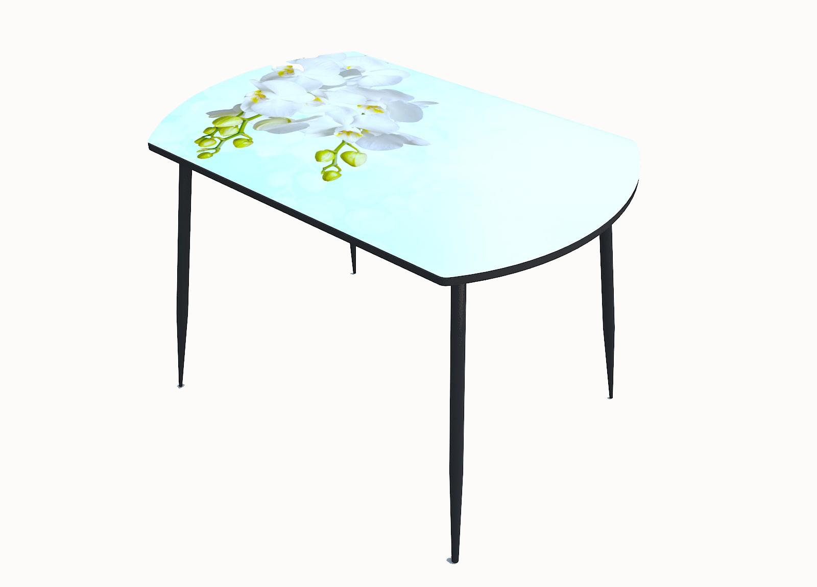 Стол стекло фотопечать Орхидея 063