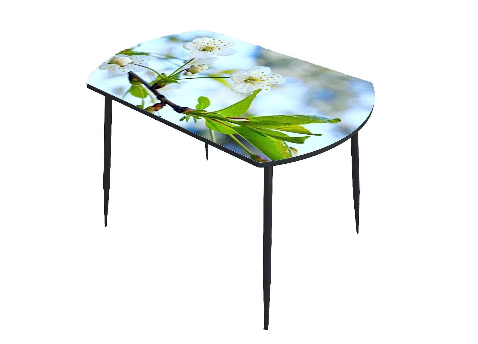 Стол стекло фотопечать Цветы 074