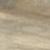 дуб бомонт