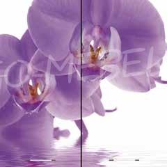 Кухня Олива П 600  с фотопечатью орхидея